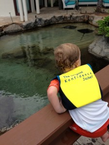 JJ looking at the Stingrays